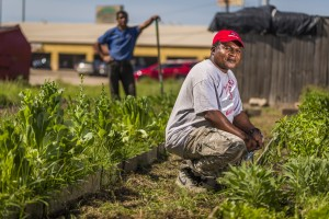 Marketing images for Plant It Forward Farms, Thursday, April 27, 2017 in Houston.